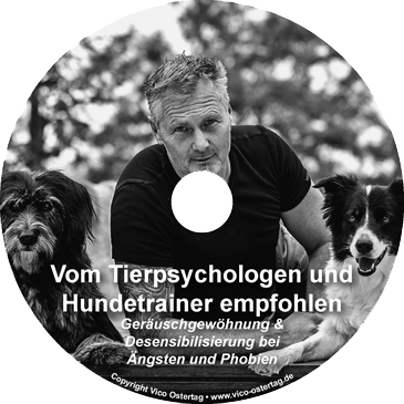 neues CD CoverDOG5